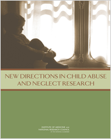 Cover of New Directions in Child Abuse and Neglect Research