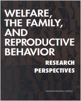 Cover of Welfare, The Family, And Reproductive Behavior