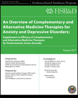Cover of An Overview of Complementary and Alternative Medicine Therapies for Anxiety and Depressive Disorders
