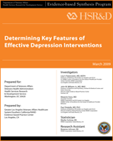 Cover of Determining Key Features of Effective Depression Interventions