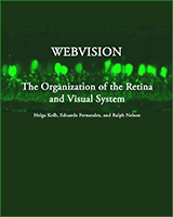 Cover of Webvision