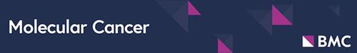 Logo of molcanc