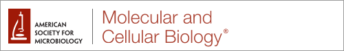 Logo of molcellb