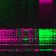 Full record GDS5499