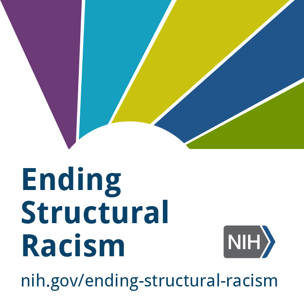 Ending Structural Racism badge