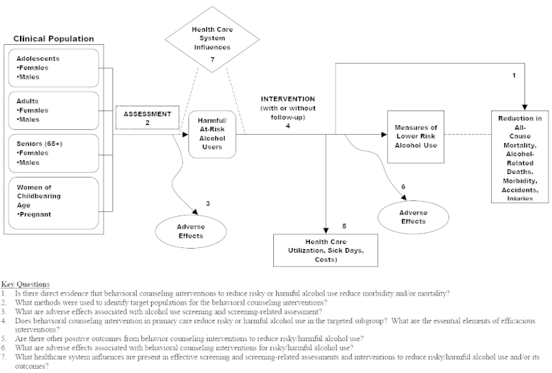 Figure 1. Analytic Framework & Key Questions.