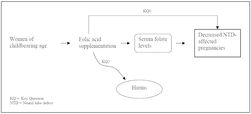 Figure 1. Analytic Framework for the USPSTF Review on Folate Supplementation for the Prevention of Neural Tube Defects.