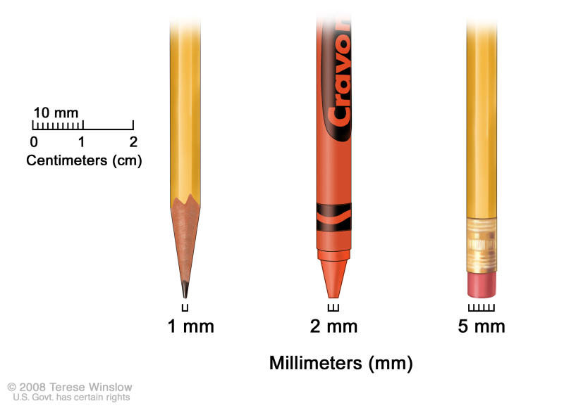 Millimeters; drawing shows millimeters (mm) using everyday objects. A sharp pencil point shows 1 mm, a new crayon point shows 2 mm, and a new pencil-top eraser shows 5 mm.