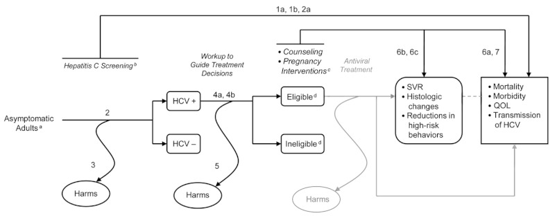 This figure depicts the analytic framework that outlines the population, interventions and outcomes considered in the review. The above figure is a modified version of a larger framework depicting the impact of both screening and treatment for Hepatitis C in adults. This figure focuses on the screening portion of the framework. The population includes asymptomatic adults and pregnant women. The interventions include screening for HCV infection risk factors, screening for HCV antibody, diagnostic tests for work-up of treatable disease, pregnancy interventions, counseling against risky behaviors and immunization for other hepatitis infections. Outcomes include mortality, morbidity, quality of life and HCV transmission as well as harms of screening and/or workup.